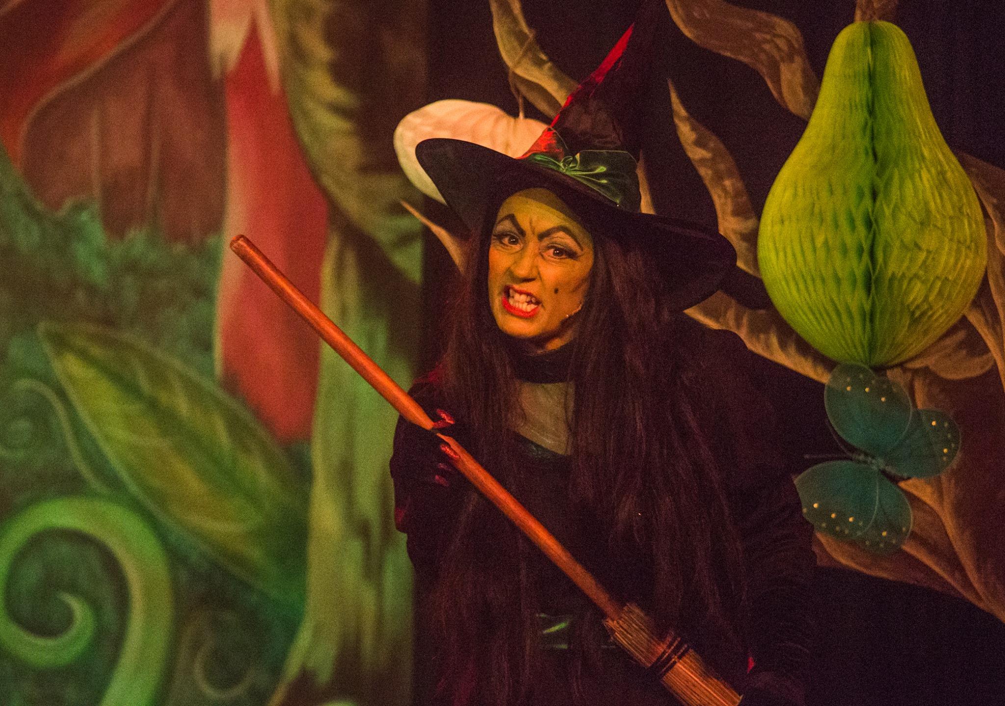 LMVGs Wizard of Oz, the Panto (Photo Credit, Austin Crowe) (2)