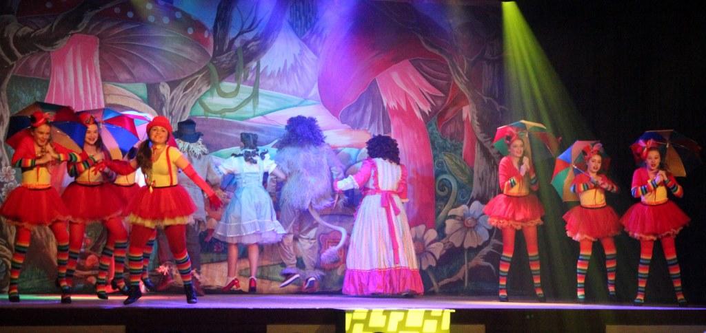 LMVGs Wizard of Oz the Panto (www.lmvg.ie) (113)
