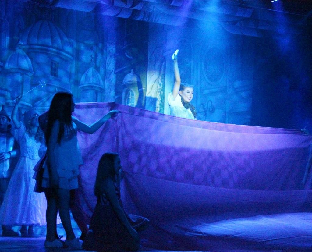 LMVGs Wizard of Oz the Panto (www.lmvg.ie) (124)