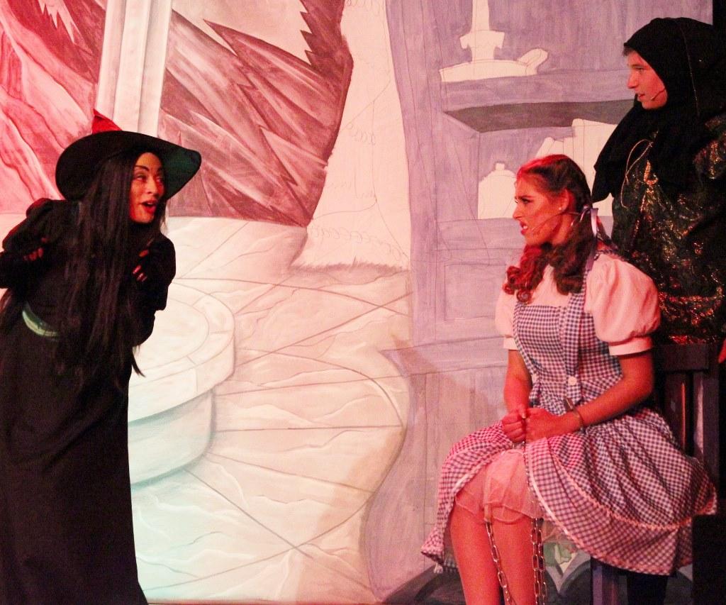 LMVGs Wizard of Oz the Panto (www.lmvg.ie) (82)