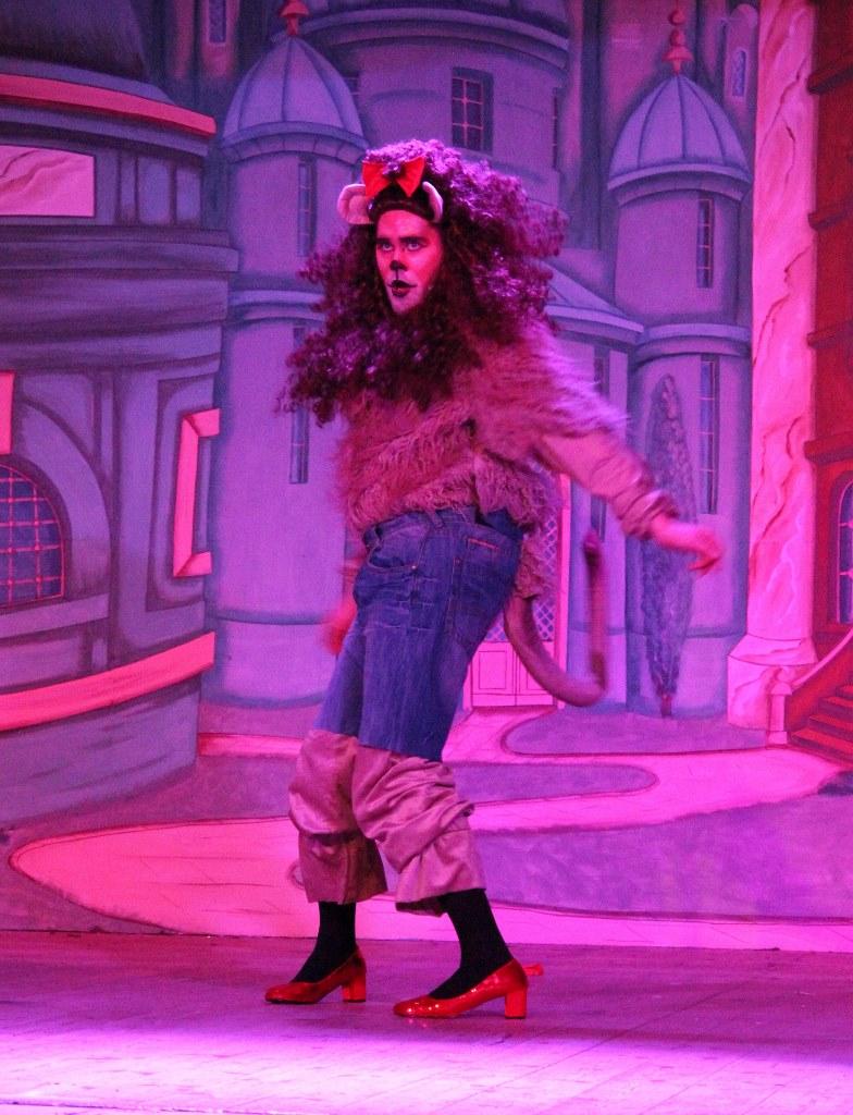 LMVGs Wizard of Oz the Panto (www.lmvg.ie) (94)